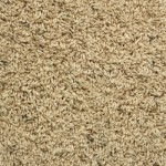 Carpet Starting at $0.75 sq ft